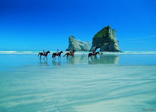 Wharariki Beach in the Abel Tasman region of New Zealand